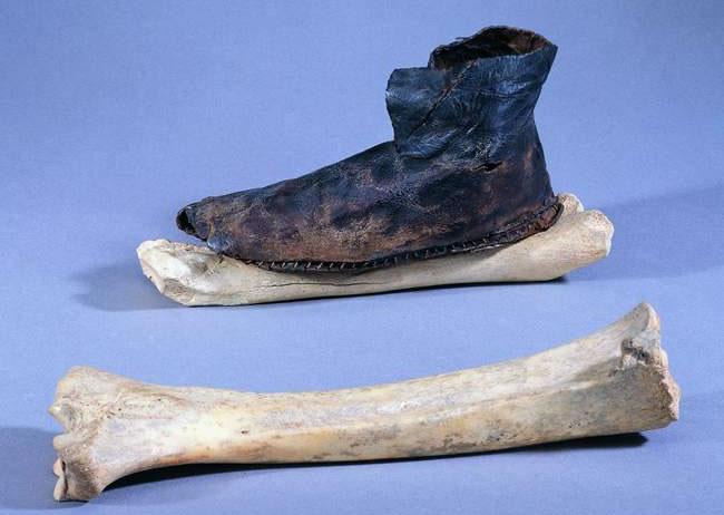 N-ice | Curiositats del patinatge sobre gel - Patins formats per ossos